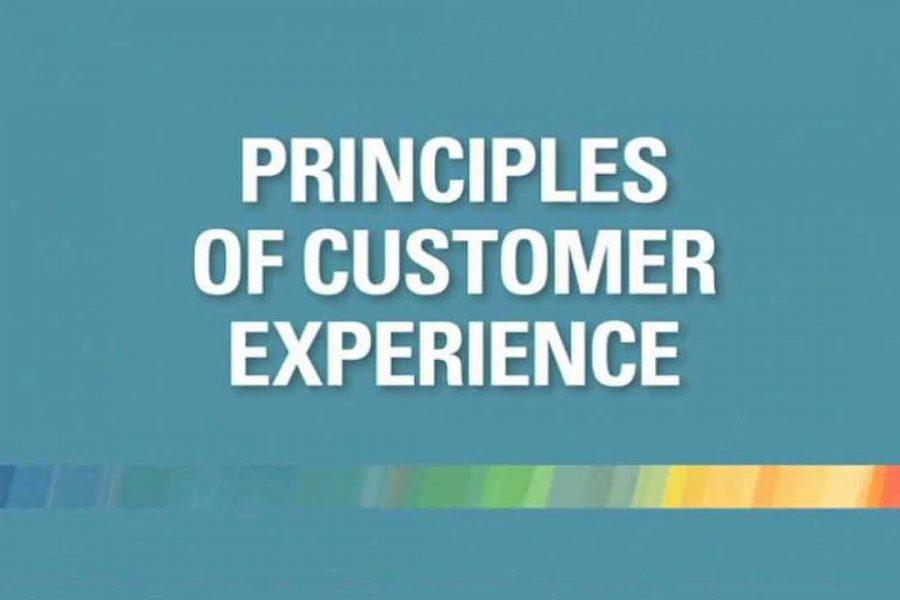 15 Ways to Measure Customer Experience